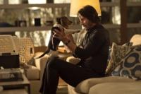 John Wick-beagle