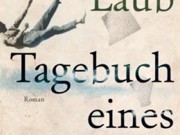 Michael Laub - Tagebuch eines Sturzes (Buch) | Cover © Klett-Cotta