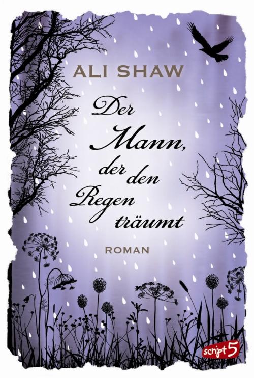 Ali Shaw – Der Mann, der den Regen träumt (Buch)