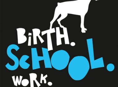 Nils Mohl - Birth. School. Work. Death. (Buch) eBook Cover © rowohlt