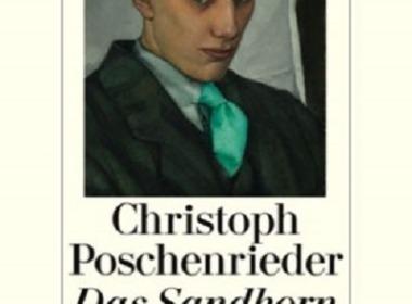 Poschenrieder - Das Sandkorn © Diogenes Verlag