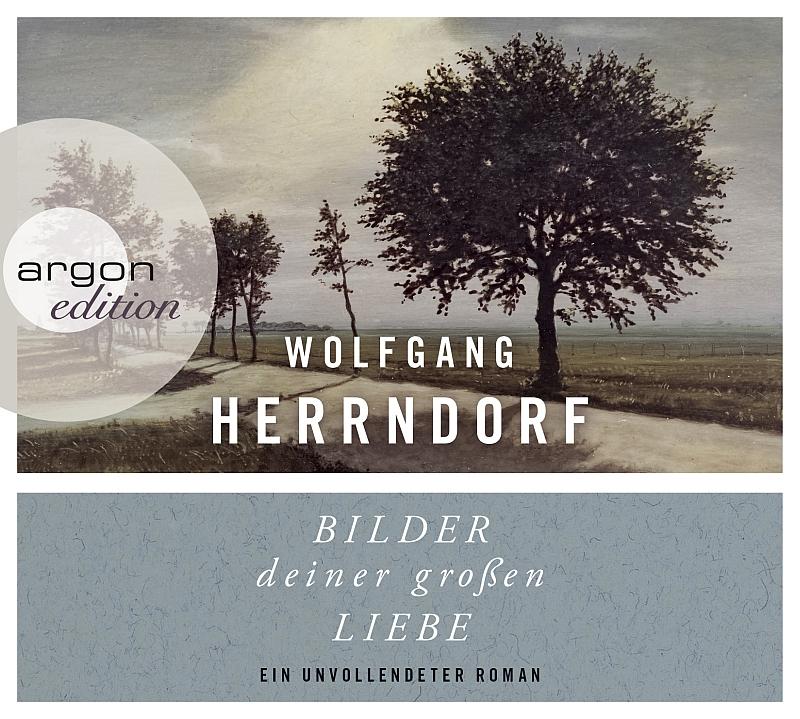 Wolfgang Herrndorf – Bilder deiner großen Liebe (Hörbuch, gelesen von Natalia Belicki)