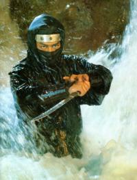NinjaDragonsDen10