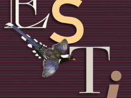 Péter Esterházy - Esti (Buch) Cover © Carl Hanser Verlag, München