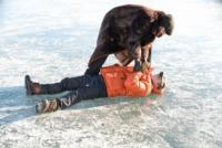 Fargo Szene 5 © 20th Century Fox